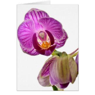 Carte pour notes pourpre d'orchidée