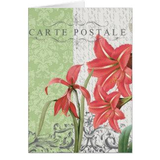 Carte pour notes vintage d'amaryllis de vacances…