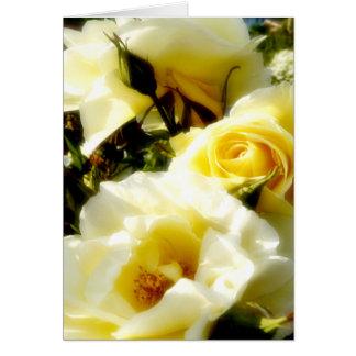 Carte rêveuse de roses jaunes