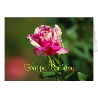 Carte rose barrée par menthe poivrée de joyeux