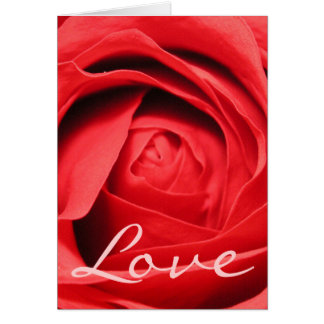 Carte rose d'amour