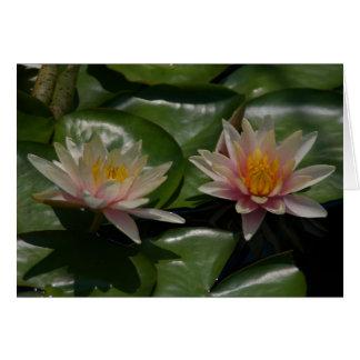 Carte rose de nénuphars de Lotus