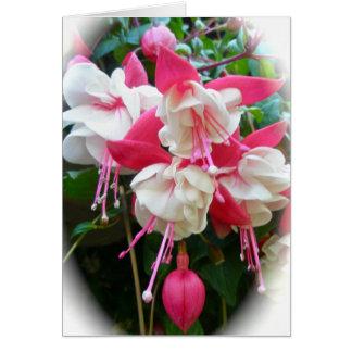 Carte rose et blanche de Fuschia