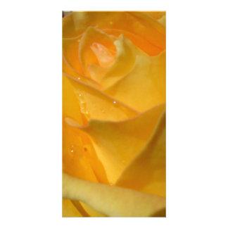 Carte Rose jaune