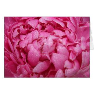 Carte rose lumineuse de pivoine