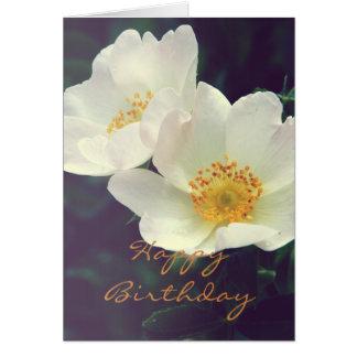 Carte rose sauvage de fleurs