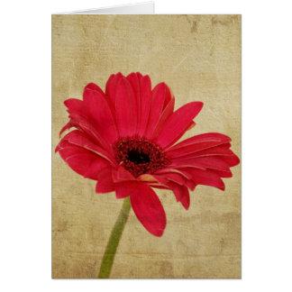 Carte rouge de fleur de Gerbera