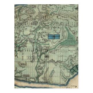 Carte sanitaire et topographique de New York City