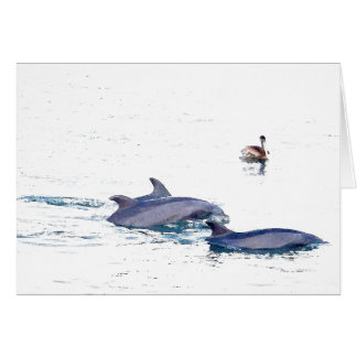 Carte sauvage de dauphins de Bottlenose