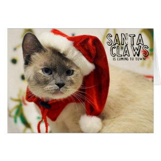 Carte siamoise de Père Noël de délivrance de chat