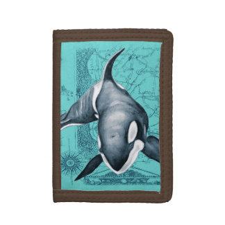 Carte Teal d'orque