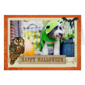 Carte turquoise de hibou d'Hurlement-o-ween