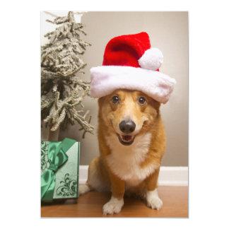 Carte Un chien rouge et blanc heureux de corgi de