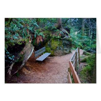 Carte vierge de banc de chemin forestier