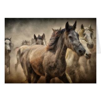 Carte vierge de chevaux