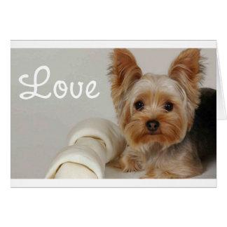 Carte vierge de chiot de Yorkshire Terrier d'amour