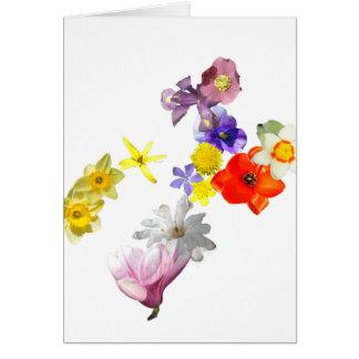 Carte vierge de fleur