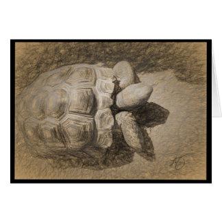 Carte vierge de tortue de désert