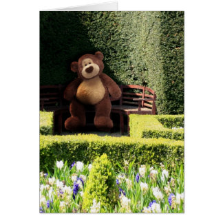 Carte vierge d'ours de nounours