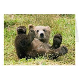 Carte vierge d'ours gris de photo brune mignonne