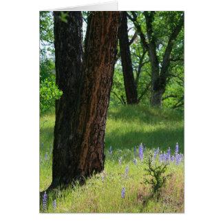 Carte vierge, fleur de lupin et chêne
