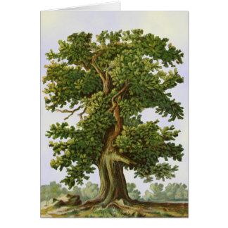 Carte vintage d'art de blanc d'art de chêne