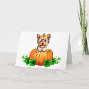 Carte Yorkshire Terrier Halloween Jack-o'-lantern
