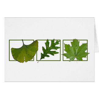 Cartes 3 feuilles