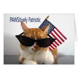 Cartes 4 juillet - chat patriotique heureux de
