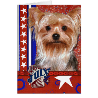 Cartes 4 juillet pétard - Yorkshire Terrier