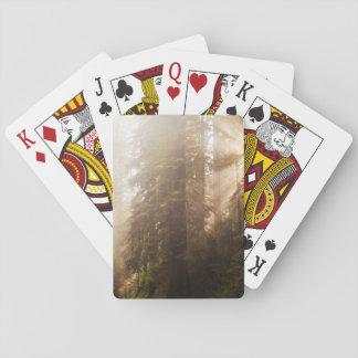 Cartes À Jouer Arbres de séquoia en brouillard de matin avec des