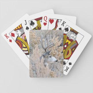 Cartes À Jouer Belles cartes de jeu de mâle du Colorado