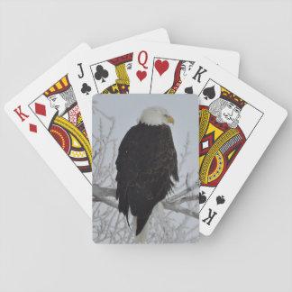 Cartes À Jouer Cartes de jeu américaines d'Eagle chauve