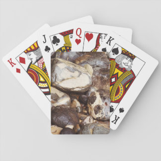 Cartes À Jouer Cartes de jeu de roches d'océan