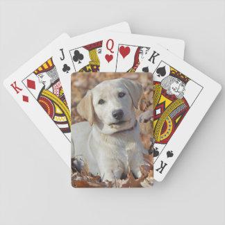 Cartes À Jouer Chiot jaune de labrador retriever