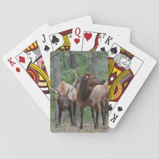 Cartes À Jouer Dominez les élans de Taureau dans le sourire
