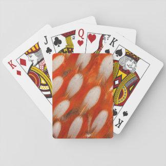 Cartes À Jouer Fermez-vous des plumes de Tragopan