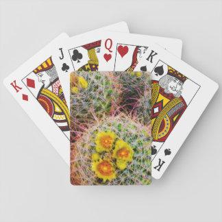 Cartes À Jouer Fin de cactus de baril, la Californie
