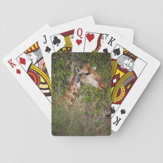 Cartes À Jouer Girafe mangeant le feuille
