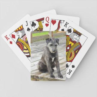 Cartes À Jouer L'oscar voit une carte de jeu de crapaud