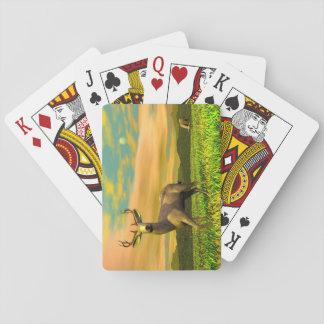 Cartes À Jouer Mâle par coucher du soleil