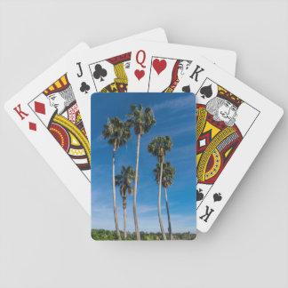 Cartes À Jouer Paumes courbantes grandes