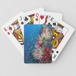Cartes À Jouer Récif coralien sous-marin, Indonésie