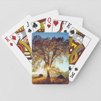 Cartes À Jouer Réserve forestière noire des chênes | Cleveland,
