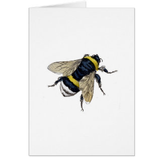 Cartes Abeille