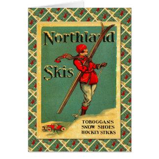 Cartes Affiche vintage de ski, skis de la terre du nord