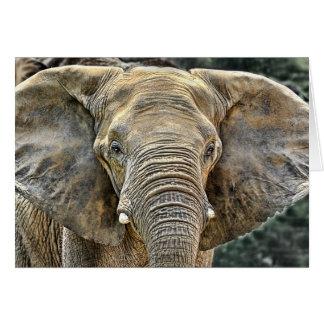 Cartes Africain d'éléphant toutes les oreilles