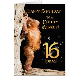 Cartes Âge effronté 16 de singe