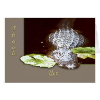 Cartes Alligator