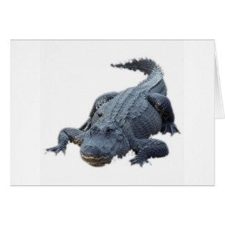 Cartes Alligator réaliste